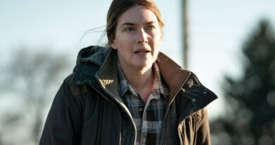 mare of easttown kate winslet 3 Vision Art NEWS