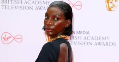 michaela coel foto tim p.whitby getty images widelg Vision Art NEWS